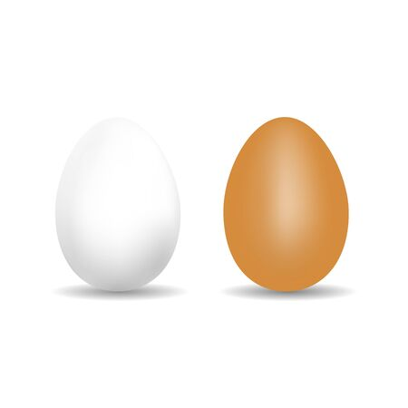 Realistic Chicken Egg - White And Brown Vector Template With Shadow - Isolated On White Background