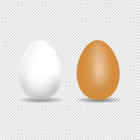 Realistic Chicken Egg - White And Brown Vector Template With Shadow - Isolated On Transparent Background Stock Illustratie