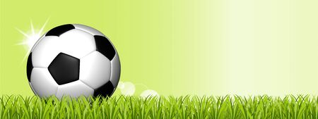 Soccer Ball On Green Grass Field - 3D Illustration With Copy Space - Isolated On Green Background With Sunbeams