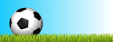 Soccer Ball On Green Grass Field - 3D Illustration With Copy Space - Isolated On Blue And White Gradient Background