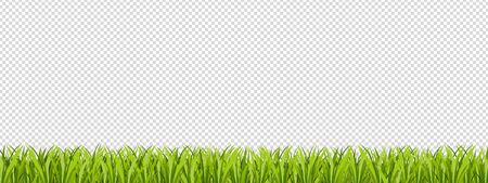 Green Lawn Area Isolated On Transparent Background - Vector Illustration With Copy Space 版權商用圖片 - 146045357