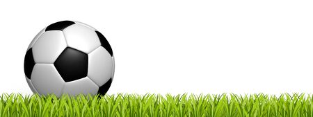 Soccer Ball On Green Grass Field - 3D Illustration With Copy Space - Isolated On White Background