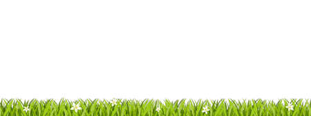 Green Lawn Area Isolated On White Background - Vector Illustration With Copy Space