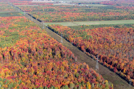Aerial view of electrical pylons and tranmissions lines going through the colorful autum forest in rural Quebec, Canada.