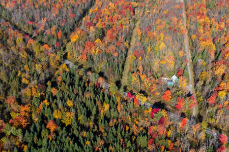 Aerial view of a rural Quebec road and a small green house in the middle of the colorful autumn forest, Canada. Imagens