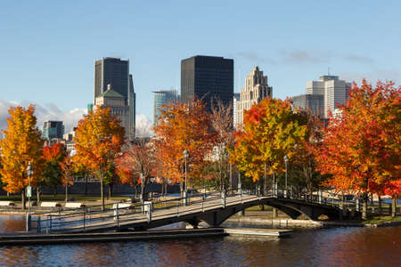 skyline and Colorful trees in historical Old Montreal seen from the Old Port bassin at fall, Canada.