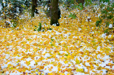 herbst: Herbststimmung Stock Photo