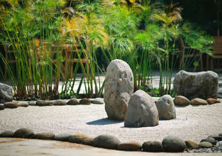 A peaceful zen rock garden with papyrus plant Stock Photo