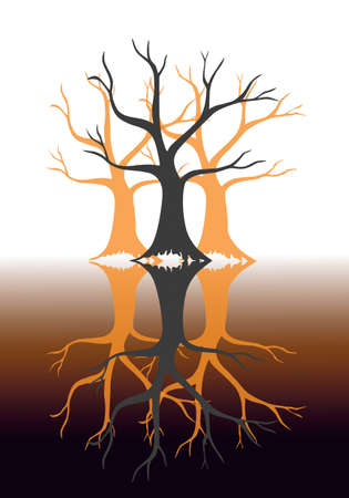 A book cover with autumn trees reflected, duality concept photo
