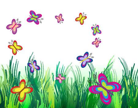 아름 다운 반짝 여름 및 다채로운 나비 복사본 공간 스톡 콘텐츠