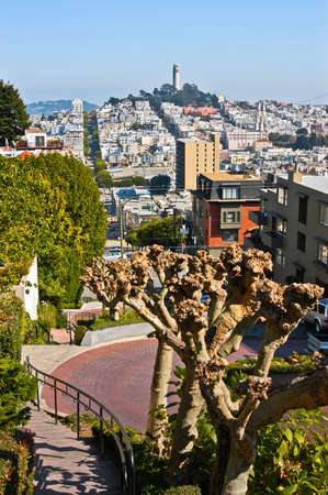 Panoramic view taken from Lombard street photo