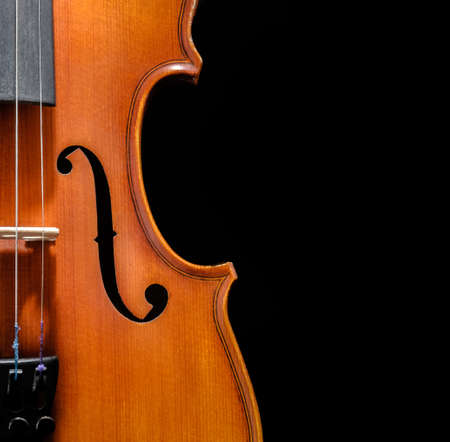 Violin front view on black background cropped closeup