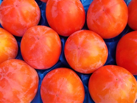Persimmon tray for sale