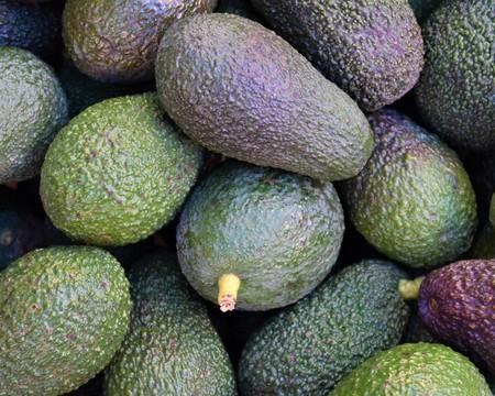 Avocados for sale (Persea americana)