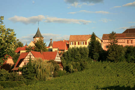 French village and vineyard by sunset. Alsace.