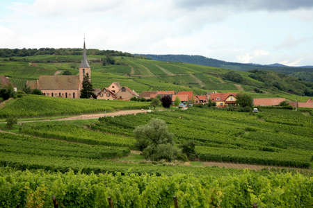 champagne region: View from Vosges to village in France - Alsace. Route des vines.