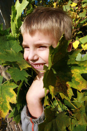 Little, blonde boy with leaves. Autumn park. Stock Photo - 3677371