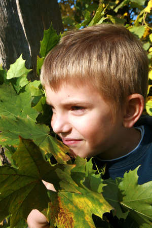 Little, caucasian, blonde boy with leaves. Autumn park. photo