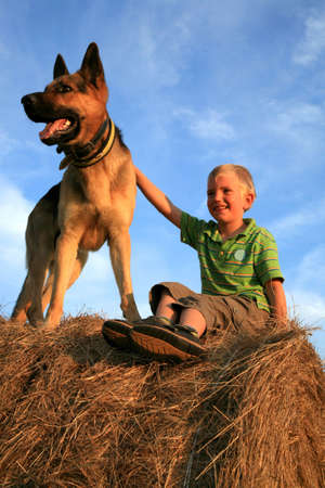 Six-year-old, white boy playing with the dog (Alsatian) on the meadow - summer in the mountains Stock Photo - 3676810