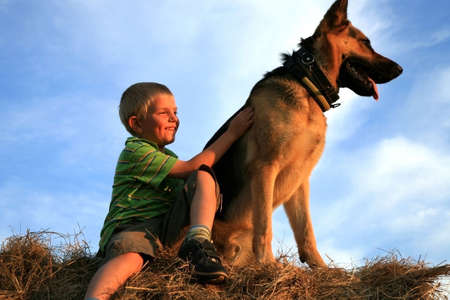 Six-year-old, white boy playing with the dog (Alsatian) on the meadow - summer in the mountains