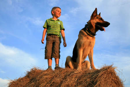 Six-year-old, white boy playing with the dog (Alsatian) on the meadow - summer in the mountains Stock Photo - 3676808