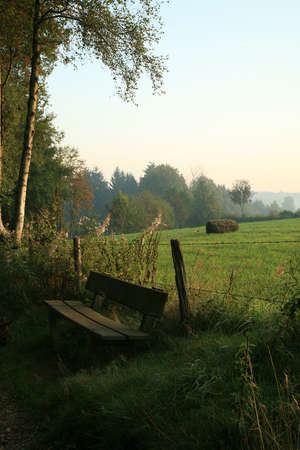 Morning with sunrise  Belgian meadow.  photo