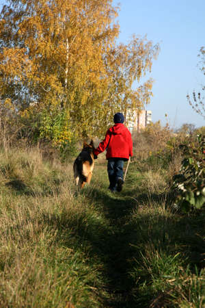 Little boy on the walk with the big, obedient dog (German Shepherd ) on suburb of the city. photo