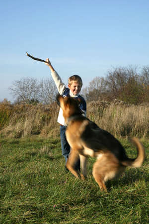 The little boy is training the big dog German Shepherd Dog ). The obedience and the cooperation. photo