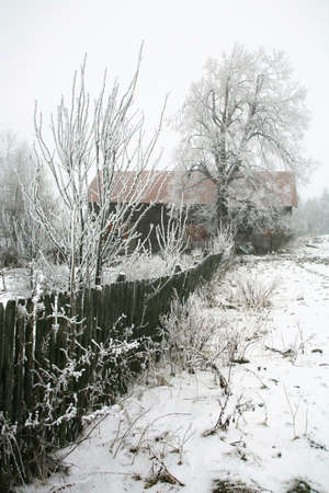 inclined: Winter in small village in Poland – Pasterka – Table Mountains – foggy day. Stock Photo