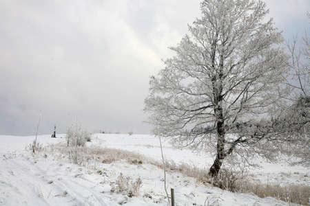 Winter in Table Mountain in Pasterka – Poland – Roadside cross. Stock Photo - 3827320