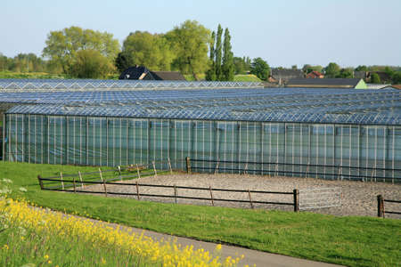 swept: Greenhouses country business – typical Dutch landscape, Netherlands. Stock Photo