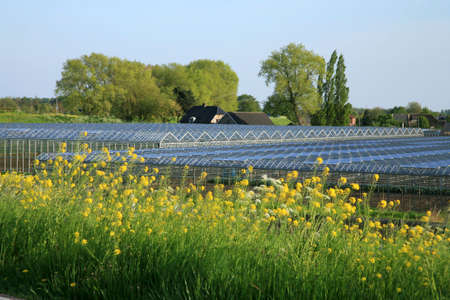 Greenhouses country business � typical Dutch landscape, Netherlands. photo