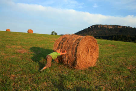 Little  boy wrestling on the meadow. Play on hay. Summer country – Pasterka, Poland Stock Photo - 3942155