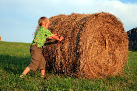 Little  boy on the meadow. Play on hay. Summer country – Pasterka, Poland Stock Photo - 3942156