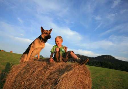Little boy playing with the dog (Alsatian) on the meadow - summer in the Stolowe Mountains, Pasterka, Poland Stock Photo - 3942148