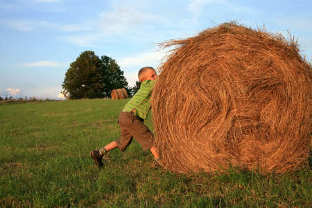 Little  boy on the meadow. Play on hay. Summer country � Pasterka, Poland Stock Photo - 3942154