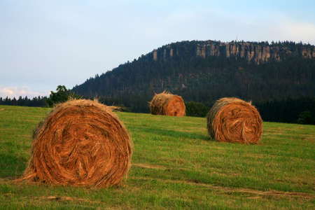 haymaking: Meadow after haymaking on Pasterka village, late summer. Seasonal work on Polish country, Poland. Famous Table ( Stolowe ) Mountains, Nationality Park.