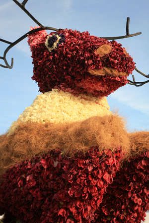 flower parade: Bouquet - famous flower parade called Bloemencorso in Netherlands. Day of Spring.