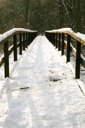 Secluded place in forest , Wooden footbridge covered with the snow. Winter scenery. Stock Photo - 4351513