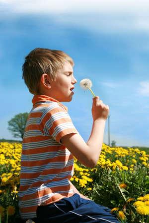 Little boy is blowing dandelion on meadow full of yellow dandelions by may. Stock Photo - 4787312