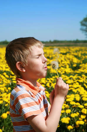 Little boy is blowing dandelion on meadow full of yellow dandelions by may. Stock Photo - 4787310