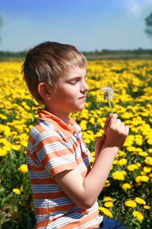 Little boy is blowing dandelion on meadow full of yellow dandelions by may. Stock Photo - 4787313