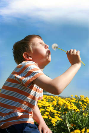 Little boy is blowing dandelion on meadow full of yellow dandelions by may. photo