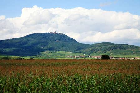 Alsace wine route. Vosges Mountain range with the clouds - view on Château du Haut-Kœnigsbourg ( castle Haut-Koenigsbourg ), France. Reklamní fotografie