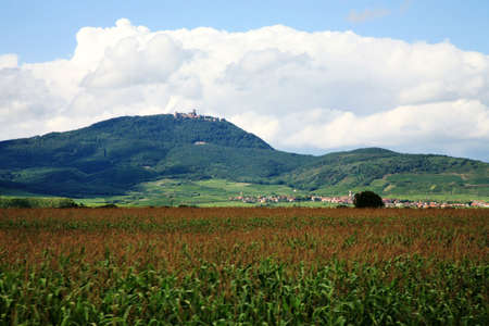 Elsässer Weinstraße. Vogesen Gebirge mit den Wolken - Blick auf Château du Haut-Knigsbourg (Schloss Haut-Koenigsbourg), Frankreich. Standard-Bild