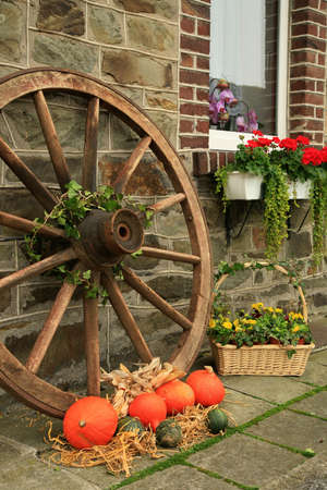 backstreet: Picturesque small decoration in farm in Belgian with still life, holiday of the pumpkin Halloween Day. Autumn crops.