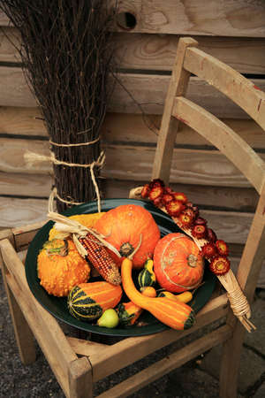 backstreet: Picturesque small decoration in farm in Belgian with still life, holiday of the pumpkin Halloween Day.  Autumn crops. Stock Photo