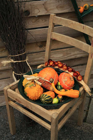 Picturesque small decoration in farm in Belgian with still life, holiday of the pumpkin Halloween Day.  Autumn crops. 版權商用圖片