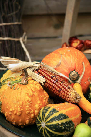 Picturesque small decoration in farm in Belgian with still life, holiday of the pumpkin Halloween Day.  Autumn crops. Standard-Bild