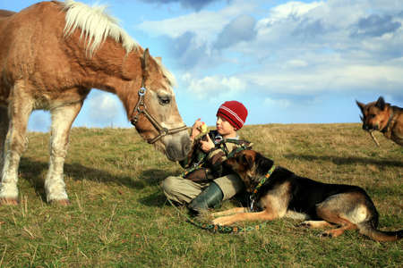 The child and his friends horse and dogs. Happy life in the countryside, the family 版權商用圖片